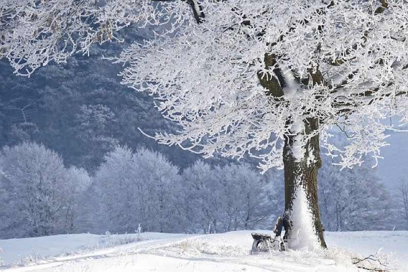 2020年令和元年-2年の冬期年越し合宿